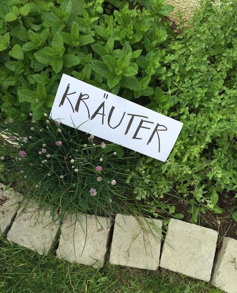 Kraeuter sophiagaleria