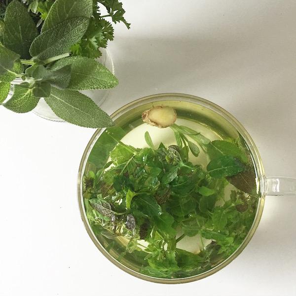 Kraeuter Tee sophiagaleria