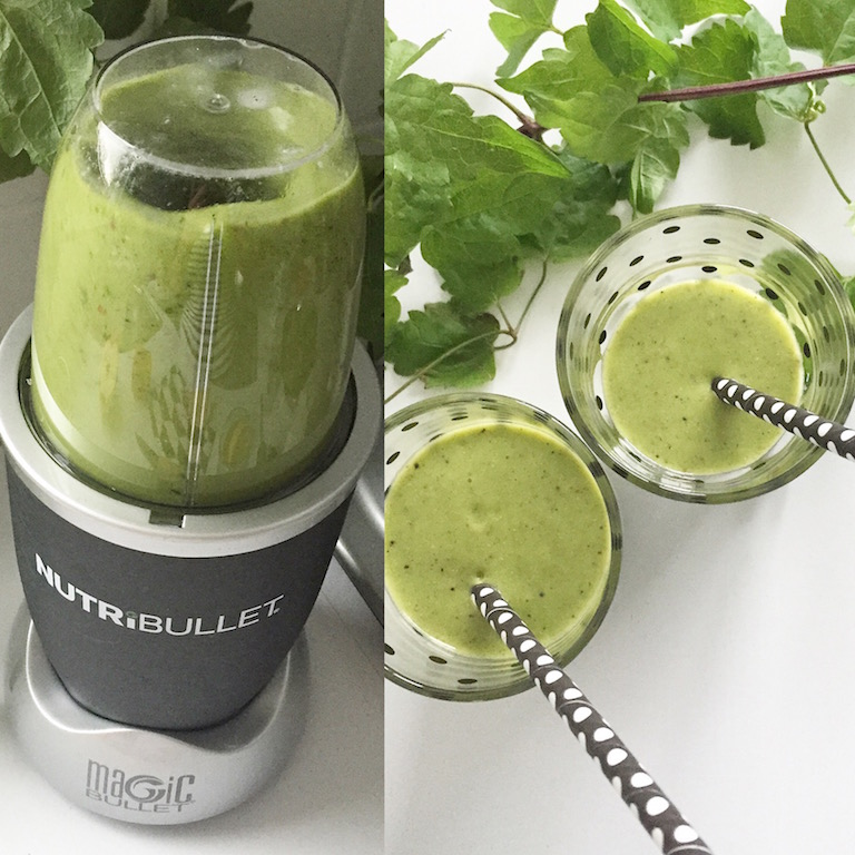 NutriBullet Smoothie Maker sophiagaleria