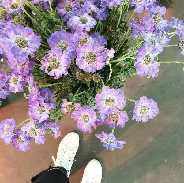 """Es gibt 1000 gute Gründe für Blumen. Nein, ich finde sogar es gibt 100 000 gute Gründe für Blumen oder sogar noch mehr! I love flowers! Und deswegen habe ich mich besonders über die Einladung von 1000 gute Gründe, eine Initiative für Blumen, gefreut. Ein Bloggerevent zum Thema """"Urban Floristic"""" im Bauwerk in Köln. Floristmeister Björn hat uns mit tollen Blumen DIY Ideen zu Gestecken, Haarkränzen und Blumendeko inspiriert und von mir aus hätte der Tag nie enden brauchen!"""