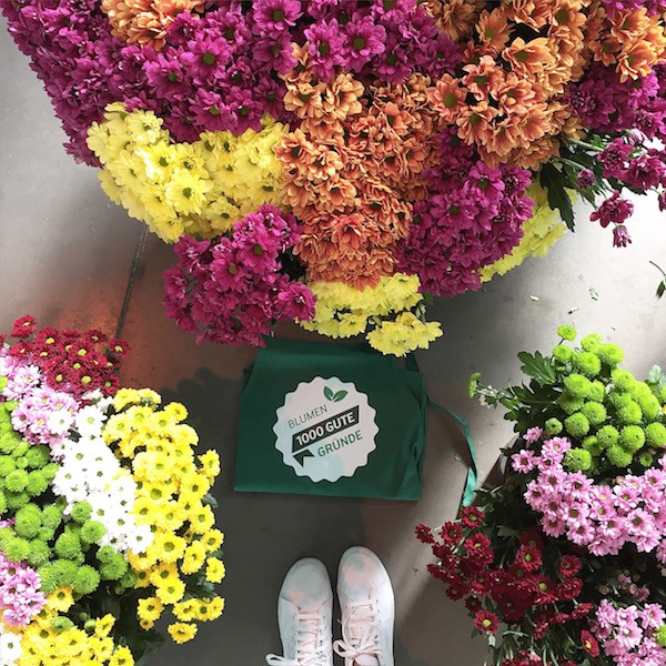 1000gutegruende Blumen sophiagaleria