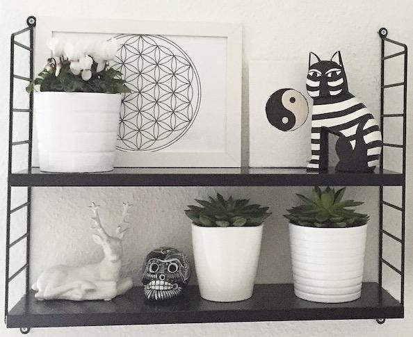 plantshelfie UJB sophiagaleria