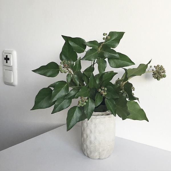 DIY Beton Vase sophiagaleria
