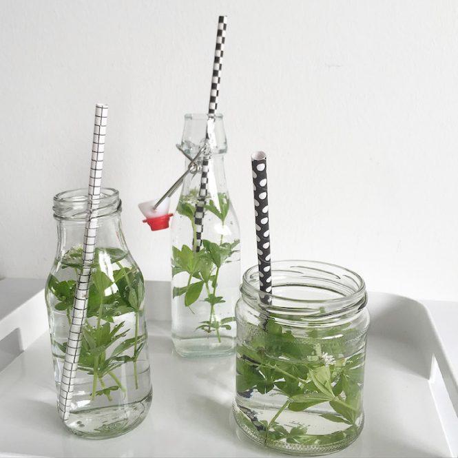 Infused Wasser Waldmeister sophiagaleria