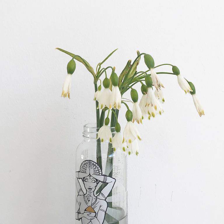 Weisse Blumen sophiagaleria