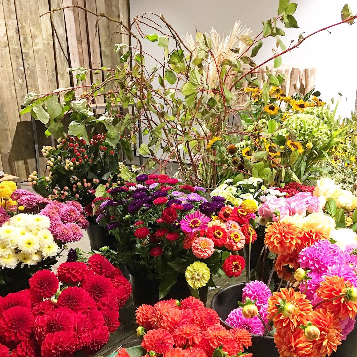 1000gutegruende_blooms_deko_sophiagaleria