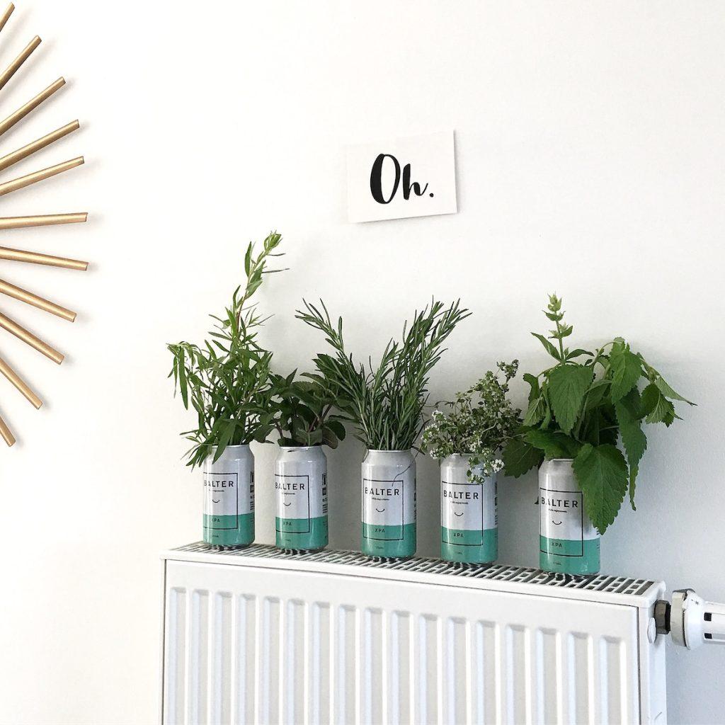 go green diy kr uter dosen deko sophiagaleria. Black Bedroom Furniture Sets. Home Design Ideas