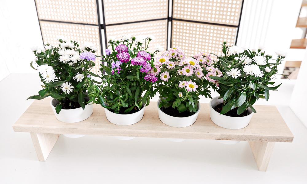 DIY Blumenbank mit Blumen