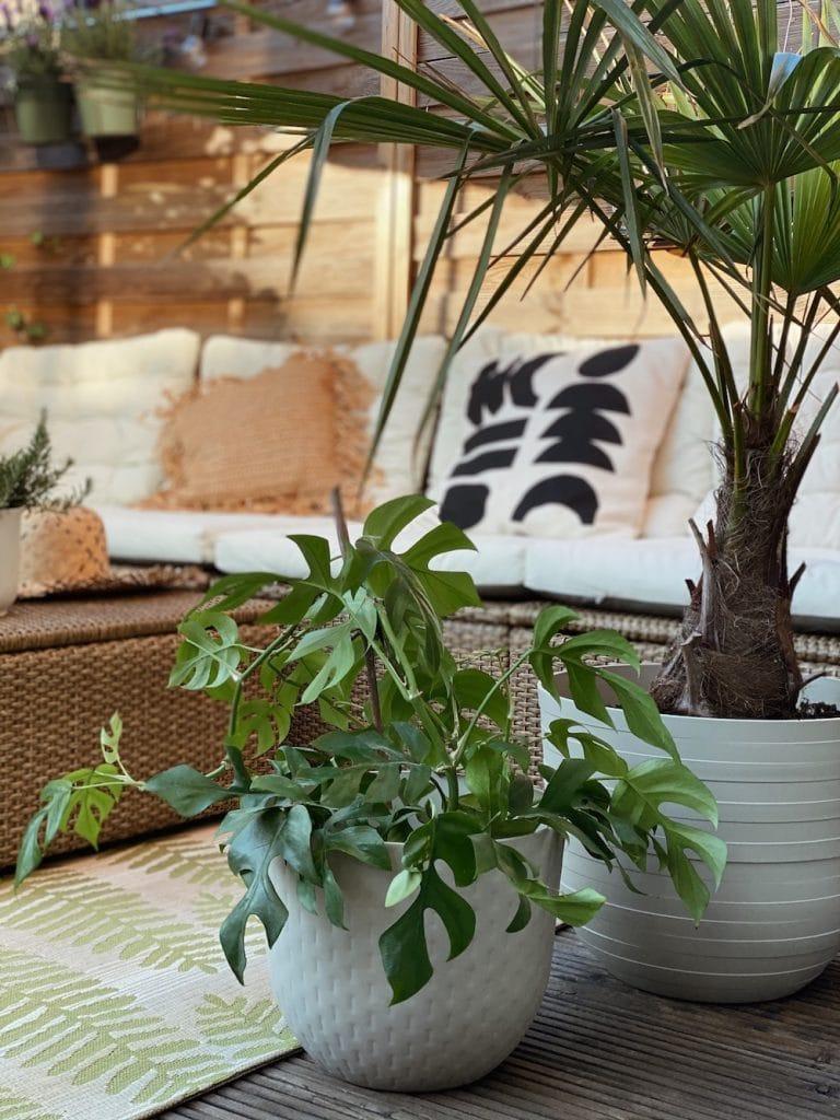 elho Pflanzentopf Fuente Outdoor sophiagaleria