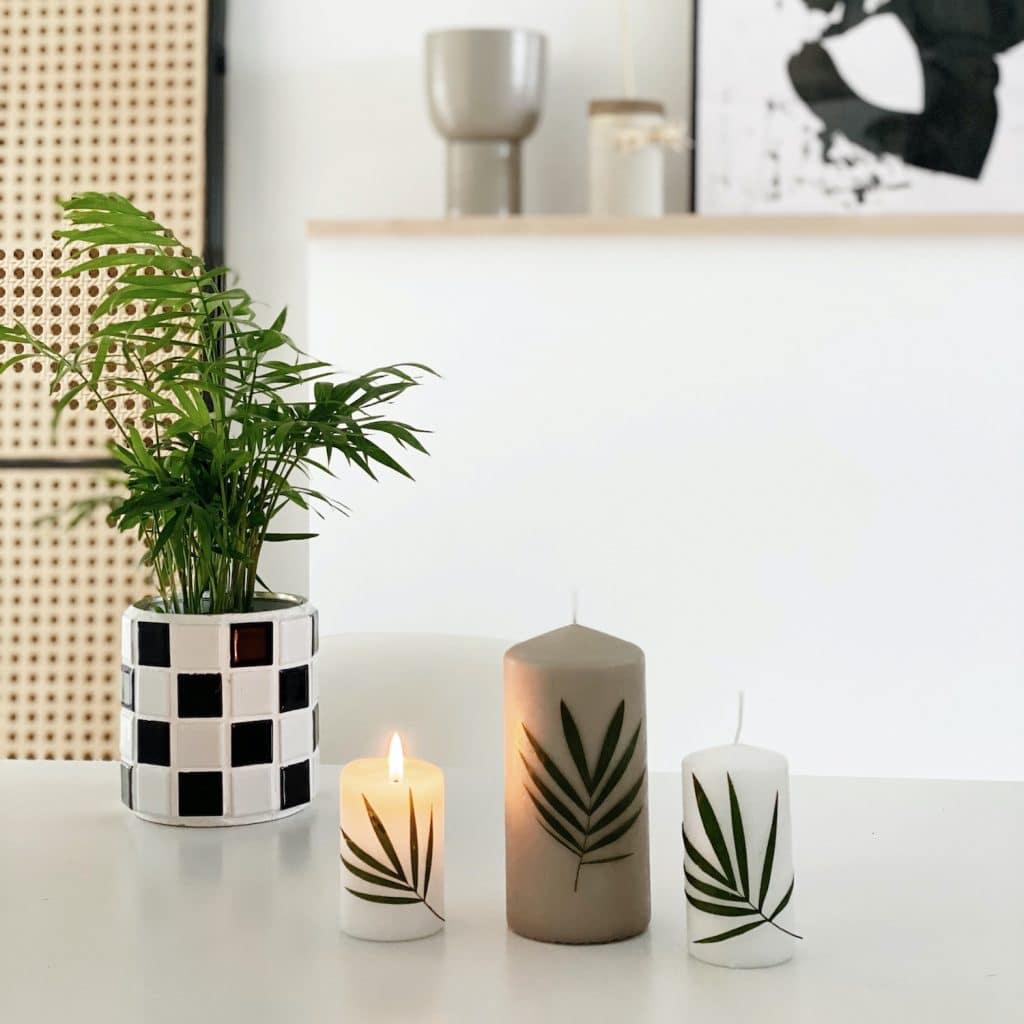 Sophiagaleria DIY Urban Jungle Kerzen
