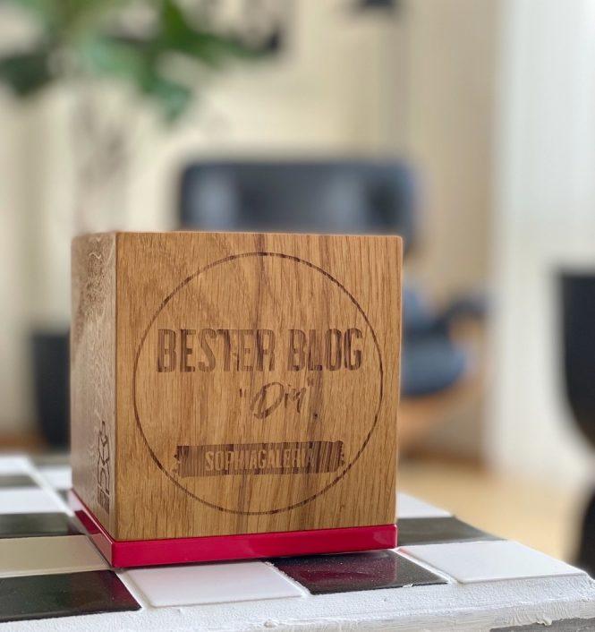 Bester DIY Blog Award sophiagaleria