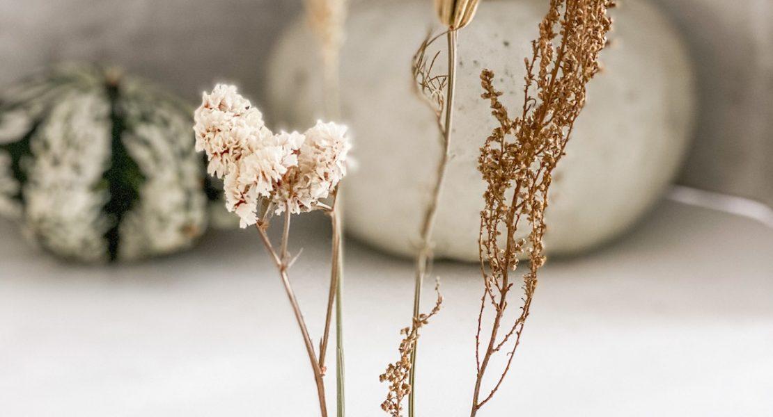 DIY Herbstdeko mit Baby boo Kuerbis und Trockenblumen sophiagaleria